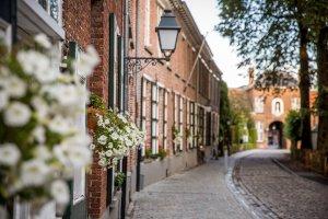 Picknick op dinsdag @ Turnhout   Vlaanderen   België